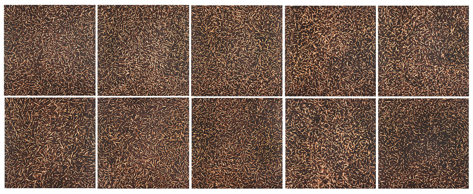 <b>Title:&nbsp;</b>Scattered<br /><b>Year:&nbsp;</b>2000<br /><b>Medium:&nbsp;</b>Scorched MDF<br /><b>Size:&nbsp;</b>122 x 122 cm, each panel