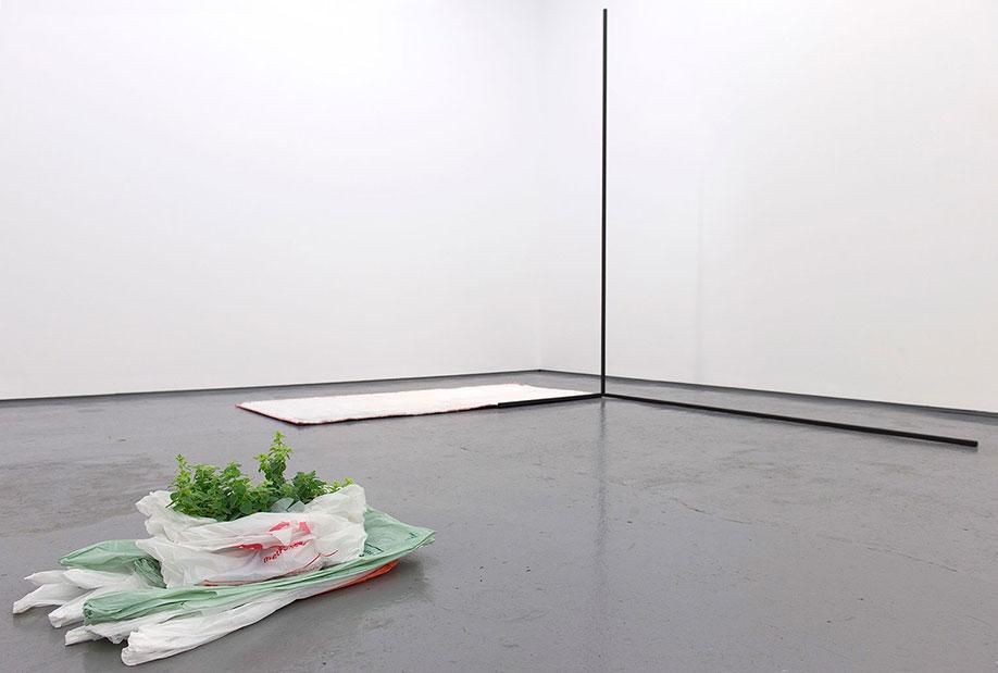 <b>Title:&nbsp;</b>POLYMER installation view<br /><b>Year:&nbsp;</b>2016<br />