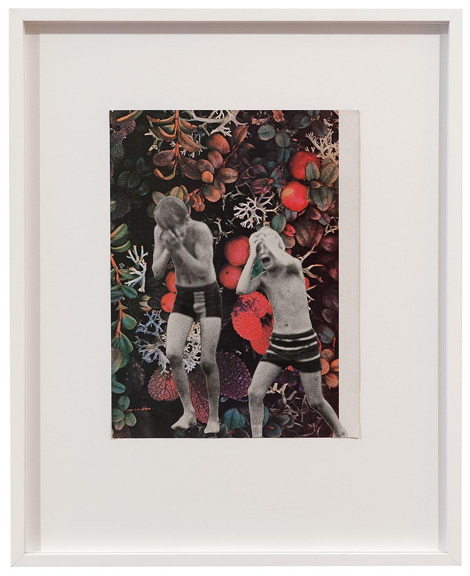<b>Title:</b>Catch Weed<br /><b>Year:</b>2009<br /><b>Medium:</b>Collage on paper<br /><b>Size:</b>42.6 x 52.7 cm
